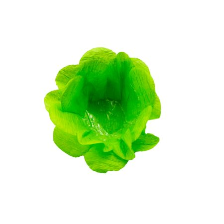 forminha-decorativa-verde-claro-lojas-brilhante
