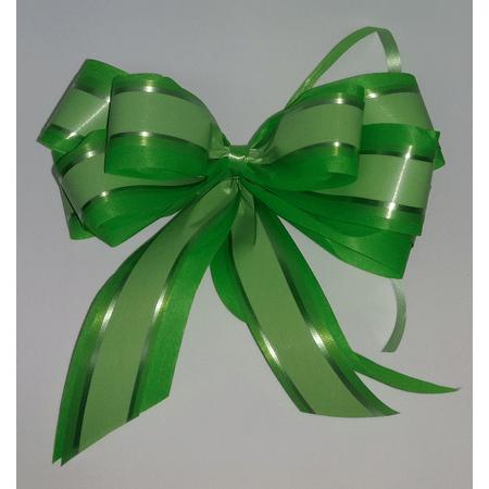laco-grande-verde-claro-lojas-brilhante