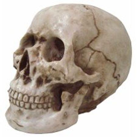 enfeite-cranio-halloween-lojas-brilhante